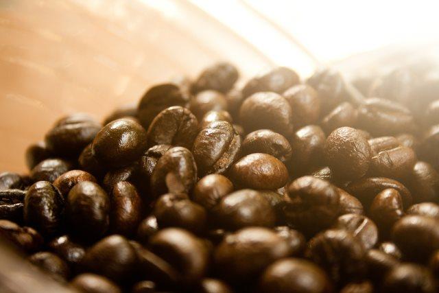 robusta-kaffeebohnen-test