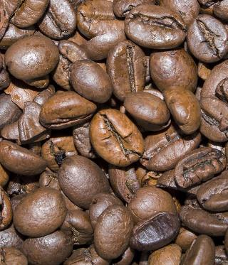 beste kaffeebohnen für filterkaffee